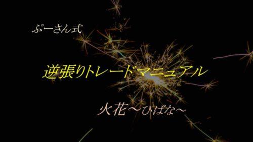 ぷーさん式FX火花